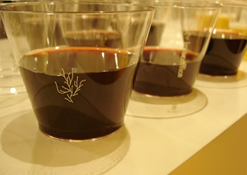 Argue-Cup